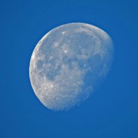 Луна :: Александр Смирнов