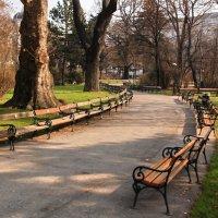 Утром в парке :: Николай Танаев