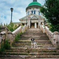 Лестница к церкви Сурб-Хач :: Александр Гапоненко
