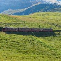 А поезд длинный смешной чудак... :: Сергей СВ