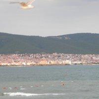 Чёрное море,Болгария. :: Пётр Беркун