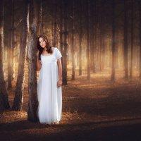 В лесу :: Игорь Грушко