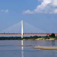 Вантовый мост :: Сергей Цветков