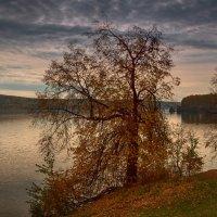 Рыбак и осень :: vladimir