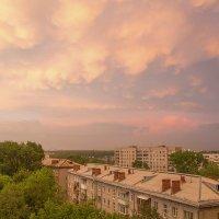 Новосибирск2 :: Любовь Давидович