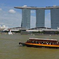 Сингапур :: Елена Данилина