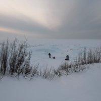 Северодвинск. Разные дни у Белого моря. Впереди белое безмолвие :: Владимир Шибинский