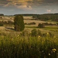 Домик в деревне - (для коровок))) :: Владимир Хиль