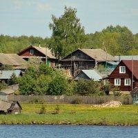 На берегах Шексны :: Nikolay Monahov
