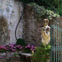 Parco Garzoni :: Galia Rota