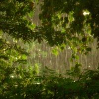 Летний дождь :: Елизавета Егорова