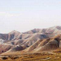ПУСТЫНЯ Израиля :: ВСЕ В ЭТОЙ ЖИЗНИ...ТАК НЕ ПРОСТО.... ALZHIS