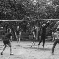 Волейбол :: Михаил Вандич