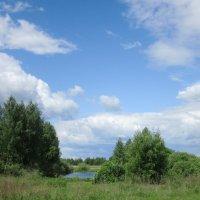 Лесной пруд. :: Михаил Попов