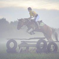 Полеты в тумане :: Настя Теплякова