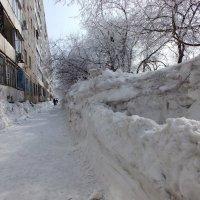 Снежные  стены. :: Анатолий 2015 Трепышко
