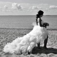 свадьба на заливе :: Лидия Nikon