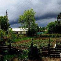 Туча для полива огородов :) :: Милла Корн