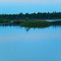 Русалки нежной островок. :: Александр