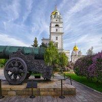 Кремль Царь-пушка :: mila