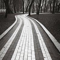 Дорожками Мариинского парка-1 :: Андрий Майковский