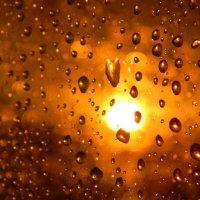 Дождливый вечерок. :: Даниил Лысов
