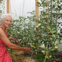 И в Сибири можно вырастить такой урожай! :: Tata Wolf