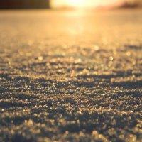Морозное утро :: Даниил Лысов
