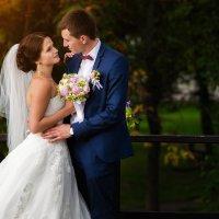 Свадьба :: Алексей Фонарёв