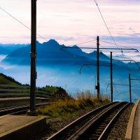 Дорога в никуда :: Zifa Dimitrieva
