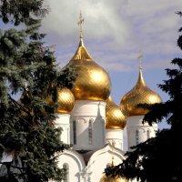 Свято-Успенский кафедральный собор в Ярославле. :: Елена