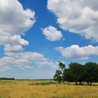 Под небом голубым... :: евгения