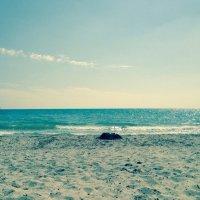 Море :: Елена Романова