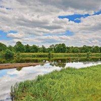 Река  и  рыбак. :: Валера39 Василевский.