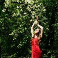 Анастасия|Девушка в красном :: Анастасия Маркова