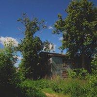 Заброшенное жилище :: Павел Зюзин