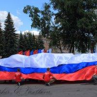 Юные патриоты... :: Екатерина Василькова