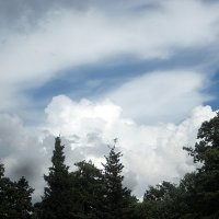 Немного неба :: laana laadas