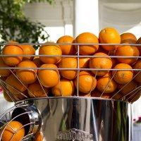 Люблю апельсины :: Денис Быстров