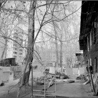 XXI век вихрем ворвался в наши дворы... :: Евгения Семененко