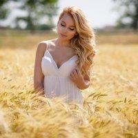 Лето :: Елена Олейник