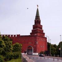 Боровицкая башня :: Владимир Болдырев