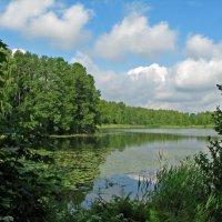 Тихое озеро :: максим лыков