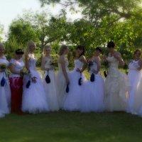 Парад невест :: Ирина Рассветная