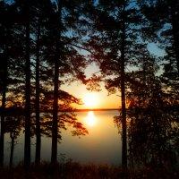 Закат у берега озера :: Владимир Звягин