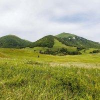 Гора Бештау :: Николай Николенко