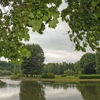 Лето в парке :: Анатолий Цыганок
