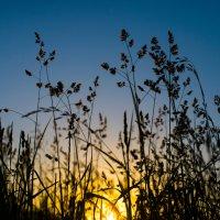 В сто сорок солнц закат пылал... :: Александр Зайцев