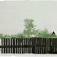Забор. Старая фотография. :: Евгений Алябьев