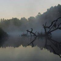 Утро на реке :: Yu Nakanya